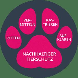 Tierschutzarbeit Hunderettung Europa