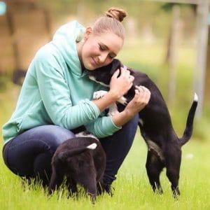 Tierschutzverein Duisburg Hunderettung Europa