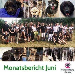 Monatsbericht Juni 2019