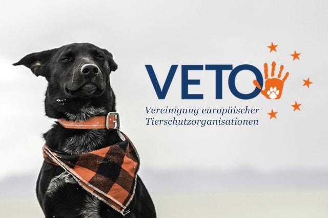 veto logo vereinigung europäischer tierschutzorganisationen